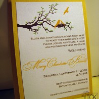 The bright yellow makes this invite perfect for a boy or a girl.